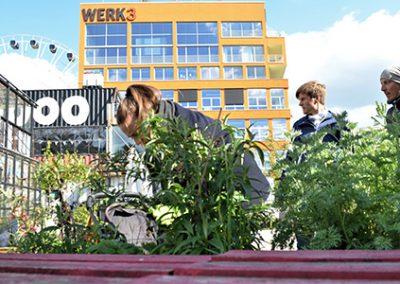 WERKsgarten – Stiftung Otto Eckart