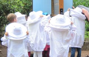 Bienenführungen – Naturfreunde Deutschland e.V.